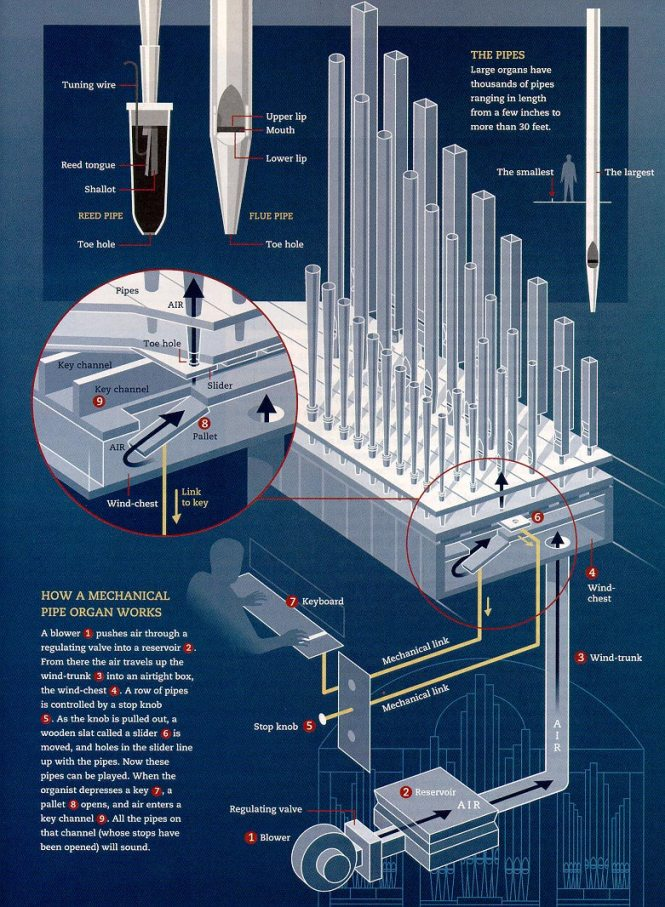 how_a_pipe_organ_works