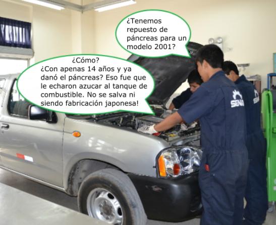Pancreas-001