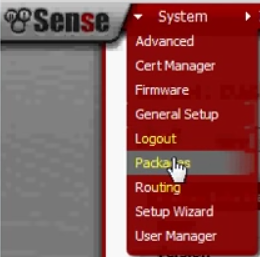 PFSense OpenVPN ROAD WARRIOR 01