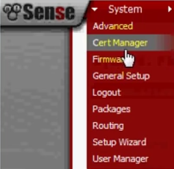 PFSense OpenVPN ROAD WARRIOR 03