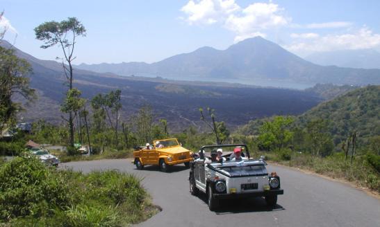 VW-Volkswagen-Safari-Thing-181-Indonesia